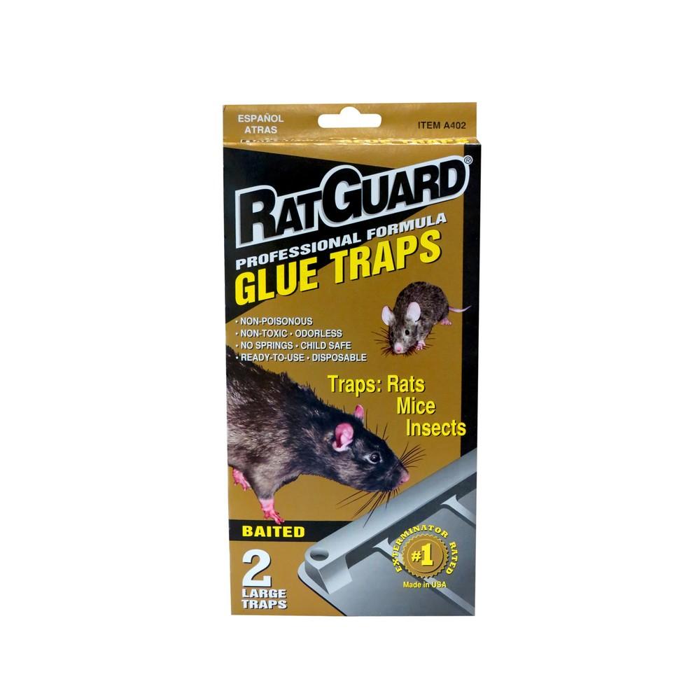 Trampa para rata adhesiva insecticidas ratguard - Trampas para cazar ratas ...