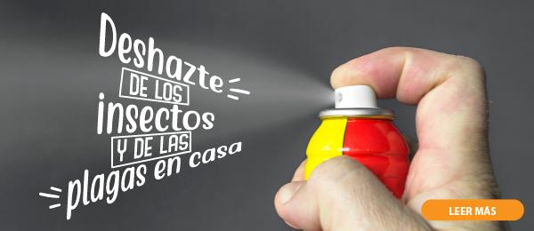 DESHAZTE DE LOS INSECTOS Y DE LAS PLAGAS EN CASA