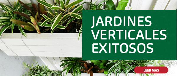 JARDINES VERTICALES EXITOSOS